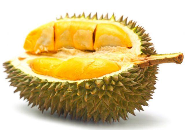 馬來西亞直送貓山王榴槤的圖片搜尋結果